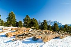 Отрежьте деревянные журналы перед панорамой снег-покрытых пиков Стоковая Фотография