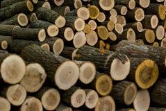 Отрежьте деревянные журналы штабелированные в куче Стоковые Изображения RF