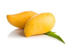 отрежьте женщину мангоа плодоовощей плодоовощ отрезанную показом Стоковые Фотографии RF