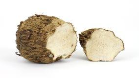 отрежьте корень malanga стоковое фото