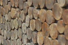 Отрежьте древесину Стоковые Фотографии RF