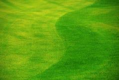 отрежьте свеже лужайку Стоковое фото RF