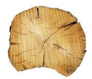 отрежьте ствол дерева Стоковое Изображение
