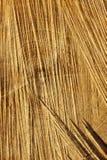 отрежьте текстуру пилы кец детали отрезоков деревянную Стоковые Фото