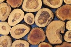 Отрежьте украшение ствола дерева для дизайна поверхности стены и предпосылки стоковая фотография