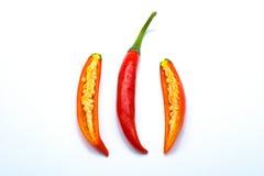 Отрезанная белизна перца красных чилей изолированная, горячая и пряная Стоковое Изображение