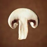 Отрезанная часть гриба champignon Стоковая Фотография RF