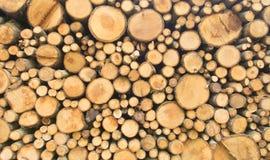 Отрезанные журналы индустрии лесохозяйства и вносить в журнал тимберса Стоковое Изображение