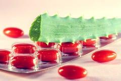 Отрезанные зеленые листья алоэ с гомеопатической красной капсулой Стоковое Изображение