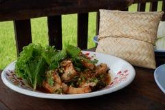 Отрезанный зажаренный салат говядины стоковые фотографии rf