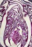 отрезанный красный цвет капусты Стоковая Фотография RF