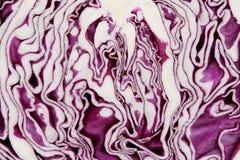 отрезанный красный цвет капусты Стоковая Фотография