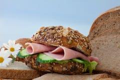 отрезанный сэндвич с ветчиной Стоковая Фотография