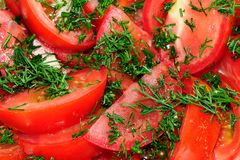 Отрезанный томат с укропом Стоковая Фотография
