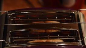 Отрезанный хлеб провозглашать в электрическом тостере сток-видео