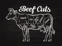 Отрезки говядины дизайн меню шаблона для ресторана, кафа Стоковое фото RF