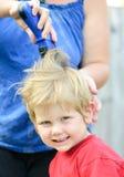 Отрезок волос стоковое изображение