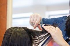 Отрезок волос стоковая фотография