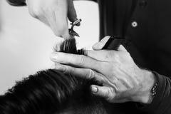Отрезок волос стоковое фото