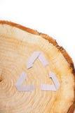Отрезок конца-вверх деревянный и рециркулирует символ Стоковая Фотография RF