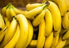 отрезок кругов бананов банана предпосылки Стоковые Изображения