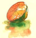 Отрезок Орандж, иллюстрация раздела иллюстрация штока