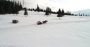 Отснятый видеоматериал вида с воздуха Bucovina на Vatra Dornei в зимнем времени, Румынии видеоматериал