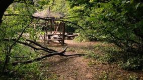 Отснятый видеоматериал деревенского деревянного положения беседкы в лесе акции видеоматериалы