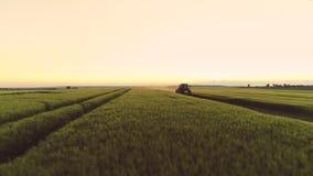 Отснятый видеоматериал трутня поля зерна Работы сельскохозяйственной техники в поле Земледелие, обрабатывая землю концепция сток-видео