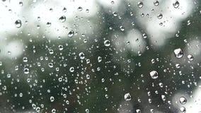 отснятый видеоматериал 4k дождь бежать вверх на ясной поверхности стекла окна с зеленым снаружи дерева и bokeh светлым на предпос видеоматериал