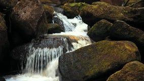 отснятый видеоматериал 4K небольшого watefall потока леса над мшистыми утесами в пиковом районе, Великобритании видеоматериал