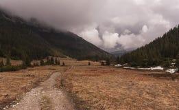 Отстаньте в долине в западном Tatras Стоковое Фото