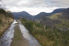 Отстаньте на пути к COL DE BUSSANG, Вогезы, Франции стоковые фотографии rf