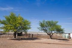 Отстробируйте на скотоводческом хозяйстве, Намибии стоковое фото