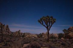Отсутствие движения на полночи Стоковое Фото
