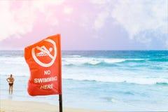 Отсутствие знака на пляже, предупредительного знака опасности заплывания на пляже Стоковое фото RF