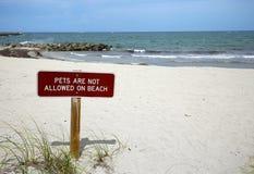 Отсутствие любимчиков на знаке пляжа Стоковое фото RF