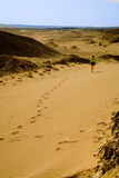 отсутствующий идти девушки пустыни Стоковая Фотография RF