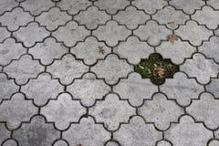 Отсутствующий кирпич в тротуаре стоковое изображение rf
