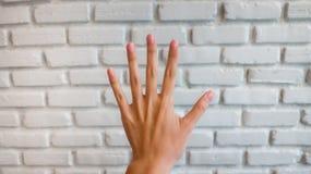 Отсчет 5 руки Стоковое Фото