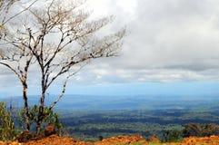 От Анд к Амазонке, эквадор стоковые фото