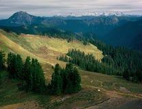 От горы эксцельсиора в Mt Глушь хлебопека, Mt Национальный лес хлебопека-Snoqualmie, северный ряд каскада, Вашингтон Стоковое фото RF
