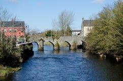 Отделка вдоль реки Boyne, Ирландии стоковая фотография rf