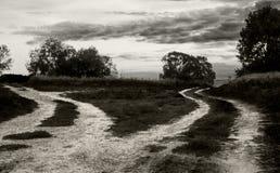 Отдельные пути Стоковое Фото