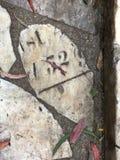 От камня фигурной стрижки кустов надгробной плиты кладбища вымощая, 24 Стоковые Изображения RF