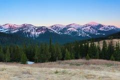 От лужайки раскрывает панорамный взгляд гор с выборами покрытыми снегом, загоренный лучами солнца утра Стоковое Фото