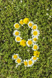 9 от номеров цветка стоковое изображение