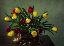 От серии к весне Стоковое Изображение