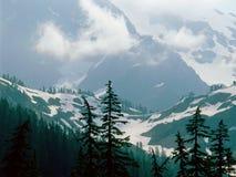 От следа Энн озера, глушь хлебопека держателя, северные каскады национальный парк, Вашингтон Стоковые Фото