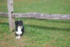 Отдыхать загородкой разделенного рельса стоковое фото